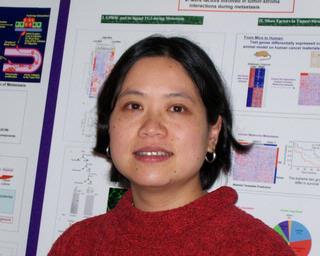 Lei Xu, PhD