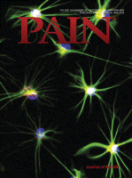 Pain Journal