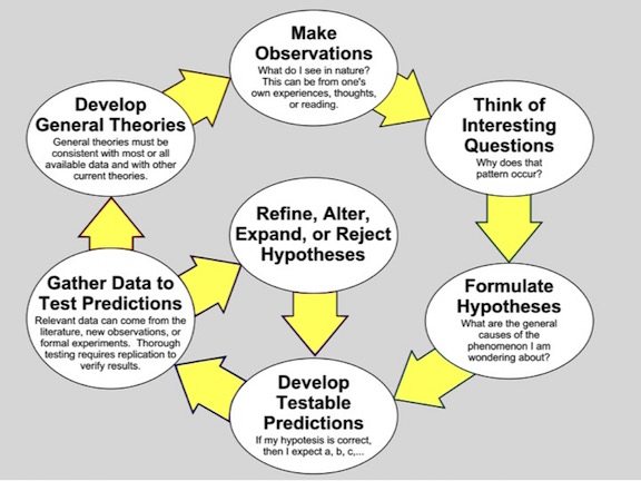 Wikepedia Scientific Method