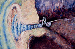 Painting of inner ear