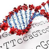 helical DNA and genetic code text