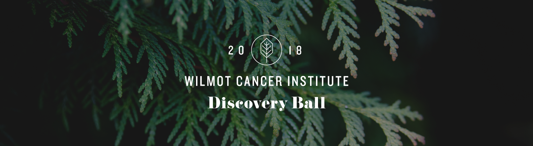 2018 Wilmot Cancer Institute Discovery Ball