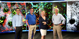 Photo of leaders of the Program for Advanced Immune Biology