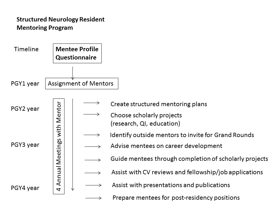 Diagram showing the timeline of the resident mentor program