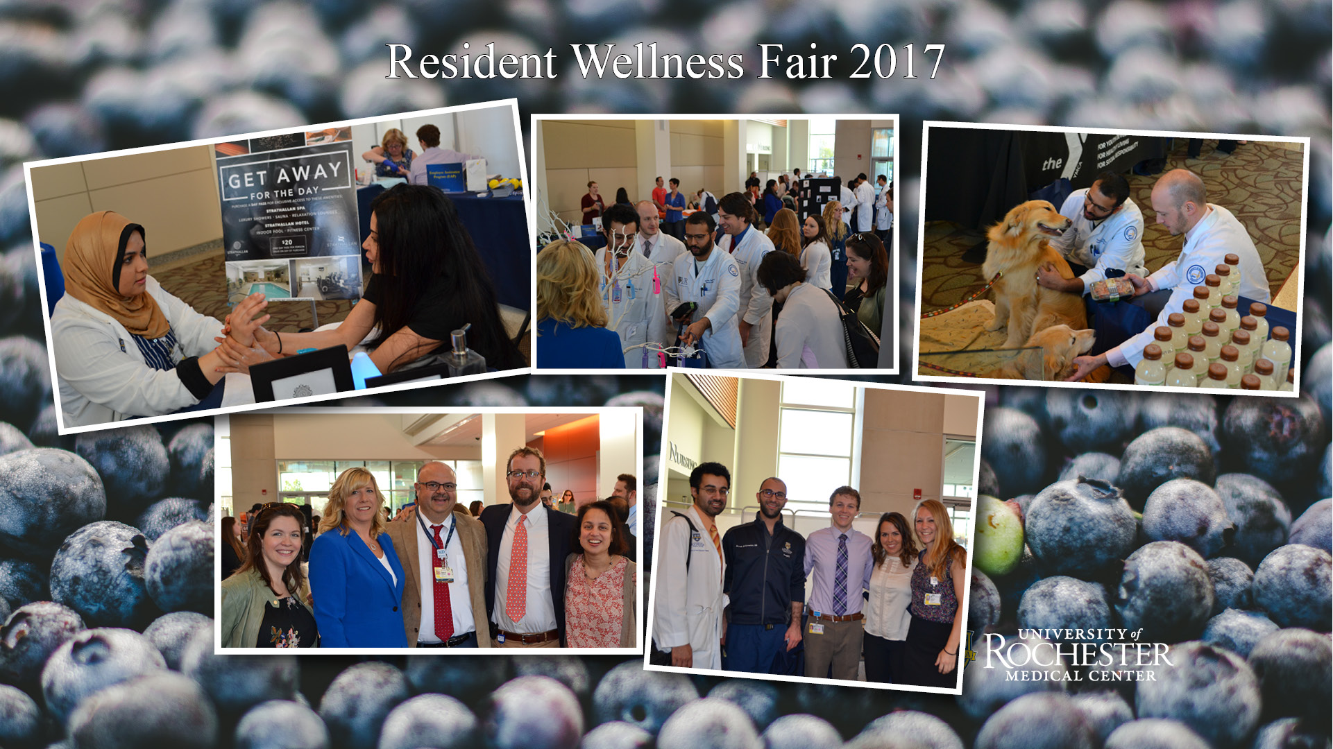 Lt upper corner- Resident Elaa Mahdi, MD getting hand massage from Strathallan Spa, Upper middle- Surgery Residents group photo of Wellness Fair at Saunder's Research Atrium, Upper right- Chris Acquina, MD and Krishna Patel with Pet Therapy Dogs at Wellneess Fair, Bottom lt- Drs. DeCaporale-Ryan, Amy Mills, Rabih Salloum, David Burns and Kathleen Raman group photo at Wellness Fair, Bottom right- Drs. Akash Joshi, Aboude Al-Nowaylati, Trevor Hansen, Sara Neimanis and Katherine Jackson at wellness fair