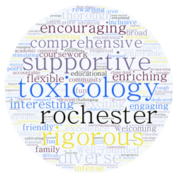 tox word box