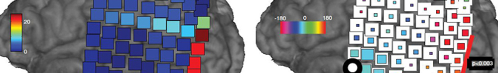 Locations of brain regions active in task