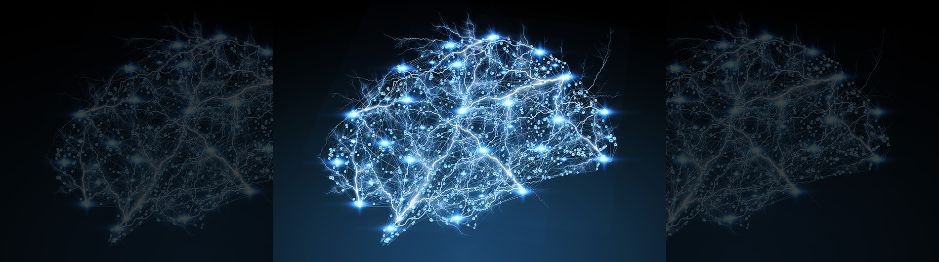artistic representation of the brain on a blue backbround