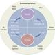 AhR Regulation of the Mature Immune System