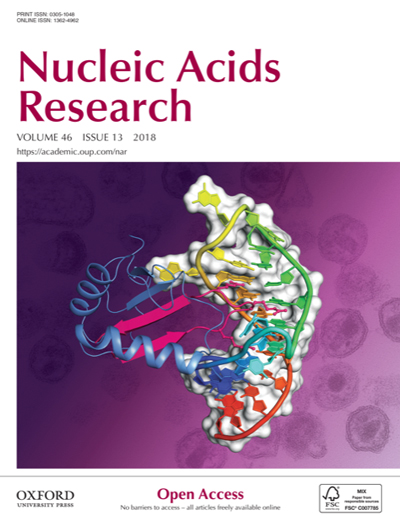 2018Nucleic acids Cover