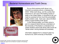 Bacterial homeostasis and tooth decay