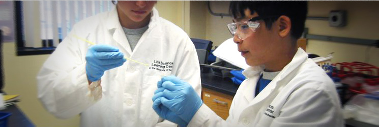 Hands-on science in our fully equipped laboratories