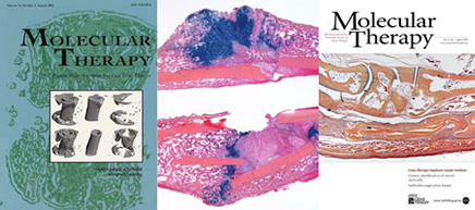 Image of Molecular Therapy Journal