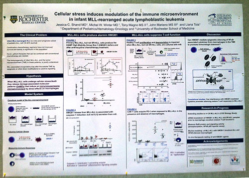 ASH 2014 Shand poster