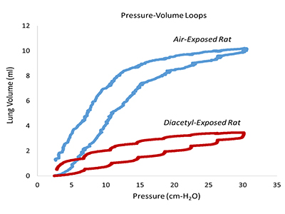 Lung function testing in chemically-exposed rodents. Pressure-volume loops, as seen on a ventilator in the ICU