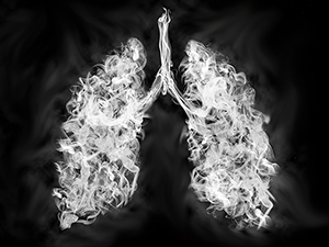 Photo of Vapor in the shape of lungs.