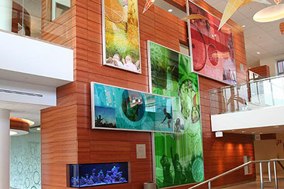 Golisano Children's Hospital Lobby Atrium