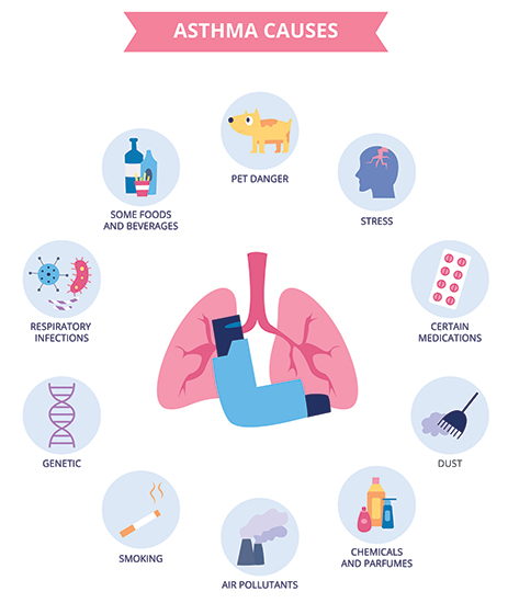 Common causes of asthma include: Respiratory infections, certain foods and beverages, pets, stress, certain medications, dust, chemicals and perfumes, air pollutants, smoking, and genetics.