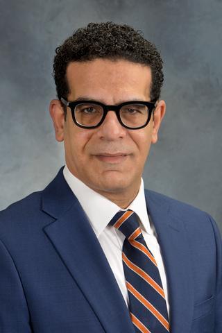 Ahmed I. Ahmed