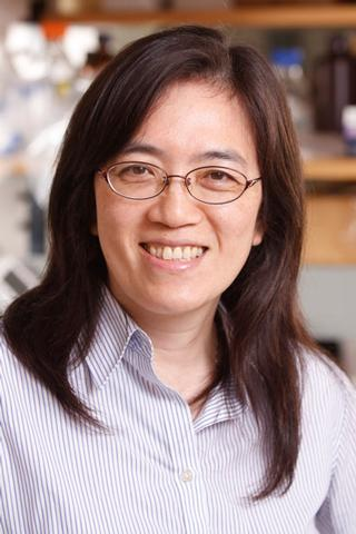 Yi-Fen Lee, Ph.D.