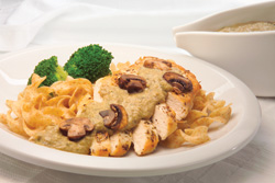 Chicken with mushroom sauce over noodles