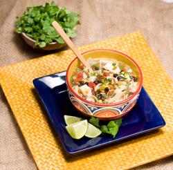 Tex-Mex chicken soup