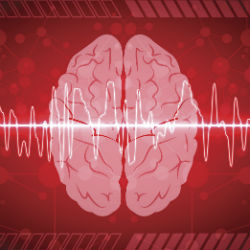 Spike Patterns May Help Identify Networks Generating Epileptic Seizures