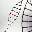 Epigenetics: A Promising Field, but Still a Ways from Helping Patients