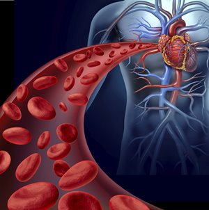 New Discovery May Help Prevent Clotting After Heart Attack