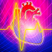 $4M Award for Prevention of Sudden Cardiac Death