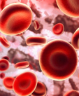 Platelets Do More than Help Blood Clot – Just Ask the Immune System