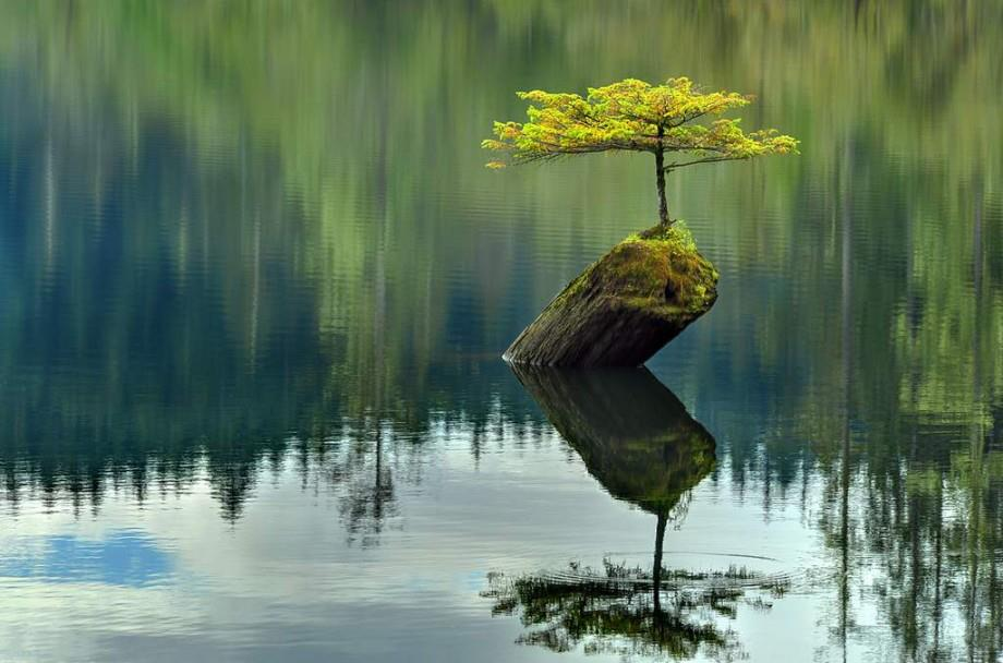 Mindfulness on the Move