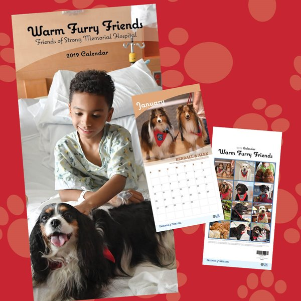 'Warm Furry Friends' Brings Comfort to the Home and Worksplace
