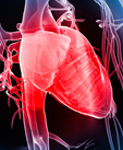 Stopping Heart Failure: A Two-Pronged Approach