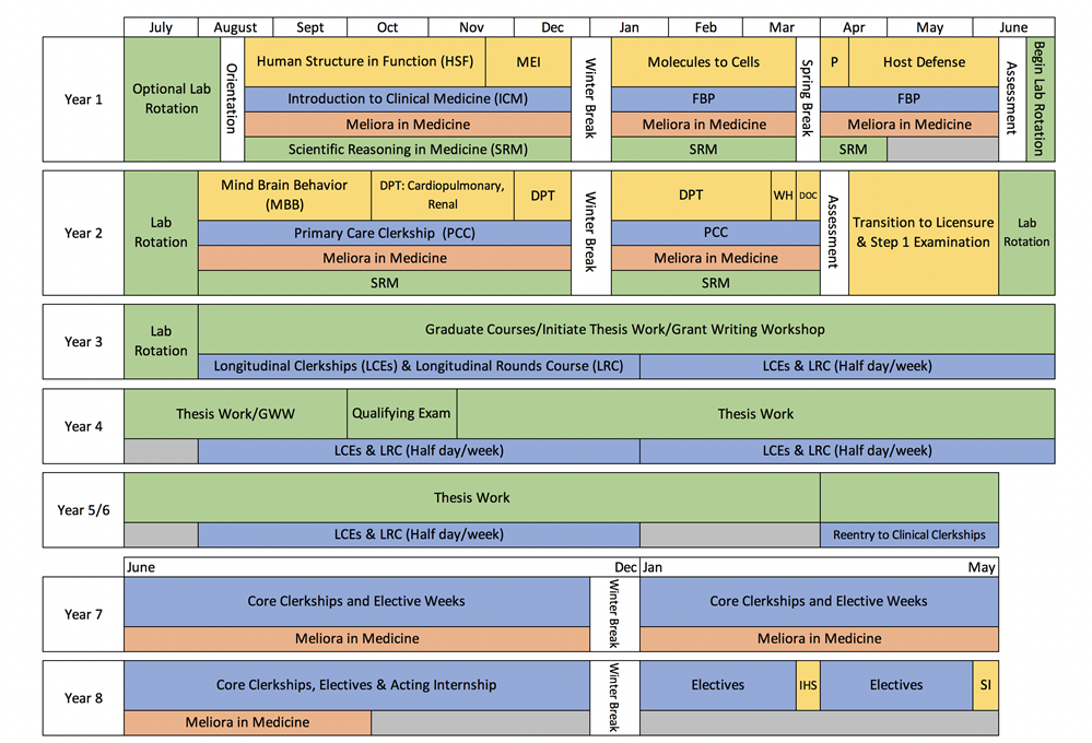 MSTP Revised Curriculum Map