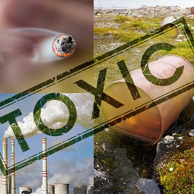 photo collage of toxins