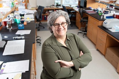 Paula Vertino, Ph.D., in her lab at Wilmot Cancer Institute