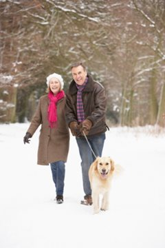 couple walking dog outdoors in winter