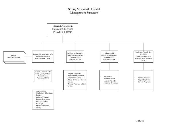 Organizational chart nursing at strong memorial hospital