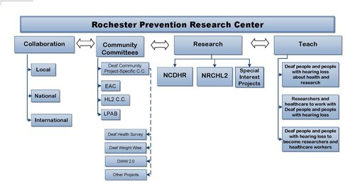 NCDHR Structure Diagram