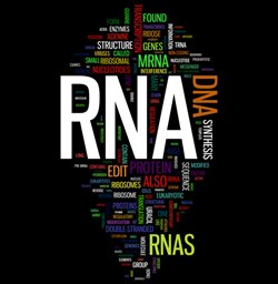 logo for RNA biology