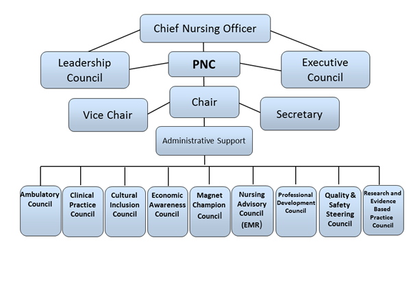 Structure of Professional Nursing Council