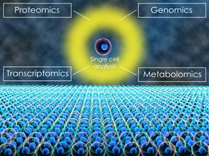 Graphic depicting genomics, proteomics, transcriptomics, and metabolomics as methods of single-cell analysis