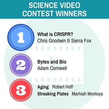 Contest Video Infographic