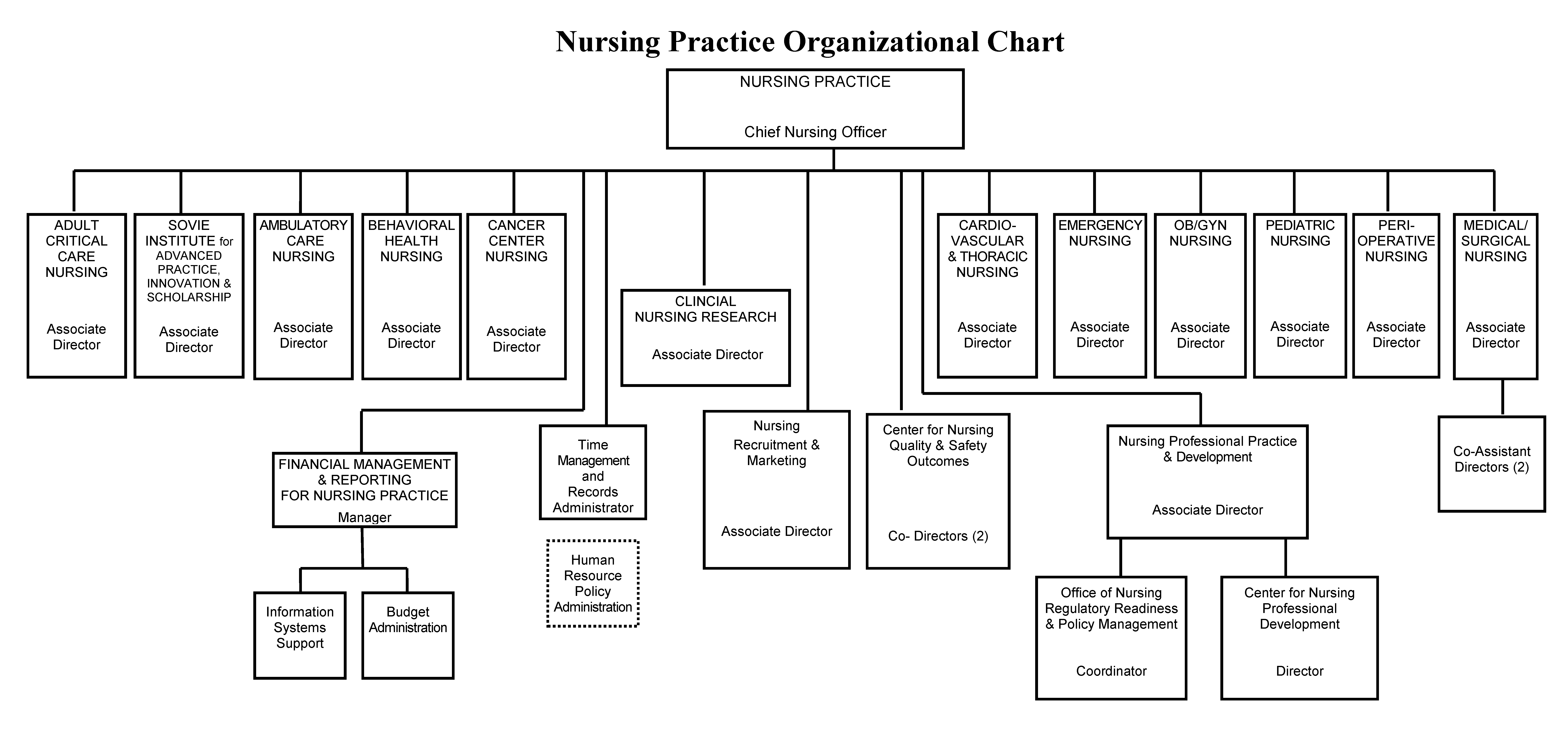 Nursing Practice Organizational Chart.aspx?width=600&height=289 organizational chart nursing at strong memorial hospital
