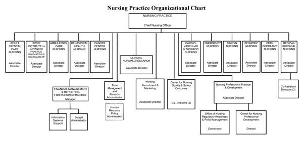 organizational chart in a hospital: Organizational chart nursing at strong memorial hospital