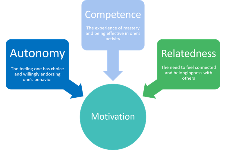 Self-Determination Theory visual