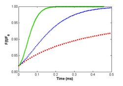 Computer generated fluorescence recovery curves