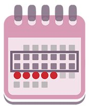 Monthly menstrual cycle