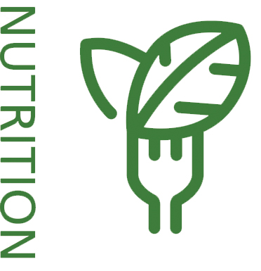 Integrative Oncology Nutrition Icon